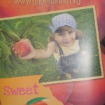 200,000 Plus Meals To Children by GROW Fund