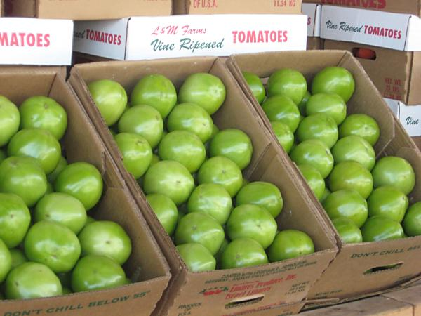 Solution to Florida Tomato Dumping Found?
