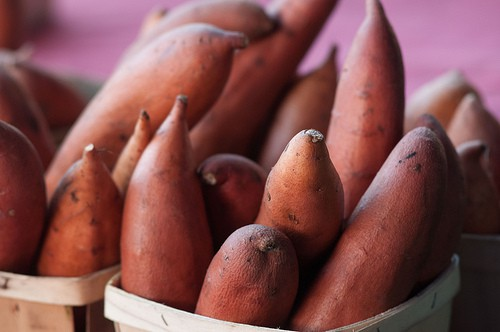 Sweet Potato Popularity is Showing Considerable Growth