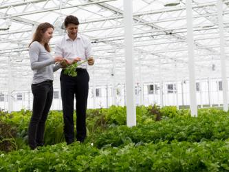 Lufa Farms Launches Third Urban Rooftop Greenhouse in Anjou