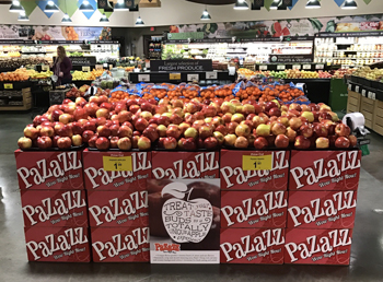 Record Sales for Pazazz Apples are Seen for This Winter
