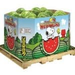 Snoopy, Charlie Brown are Coming to Bulk Bins; Marsh Stores Purchased in Bankrupcty