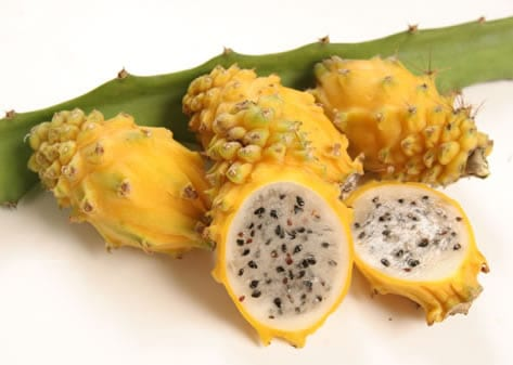 Yellow Dragon Fruit is Now Being Imported by U.S.