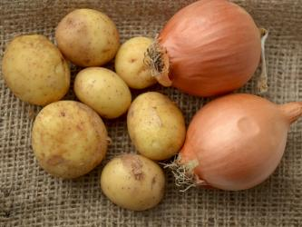 CSS Farms Partners with RPE on Agri-Pack Onion and Potato Shipments