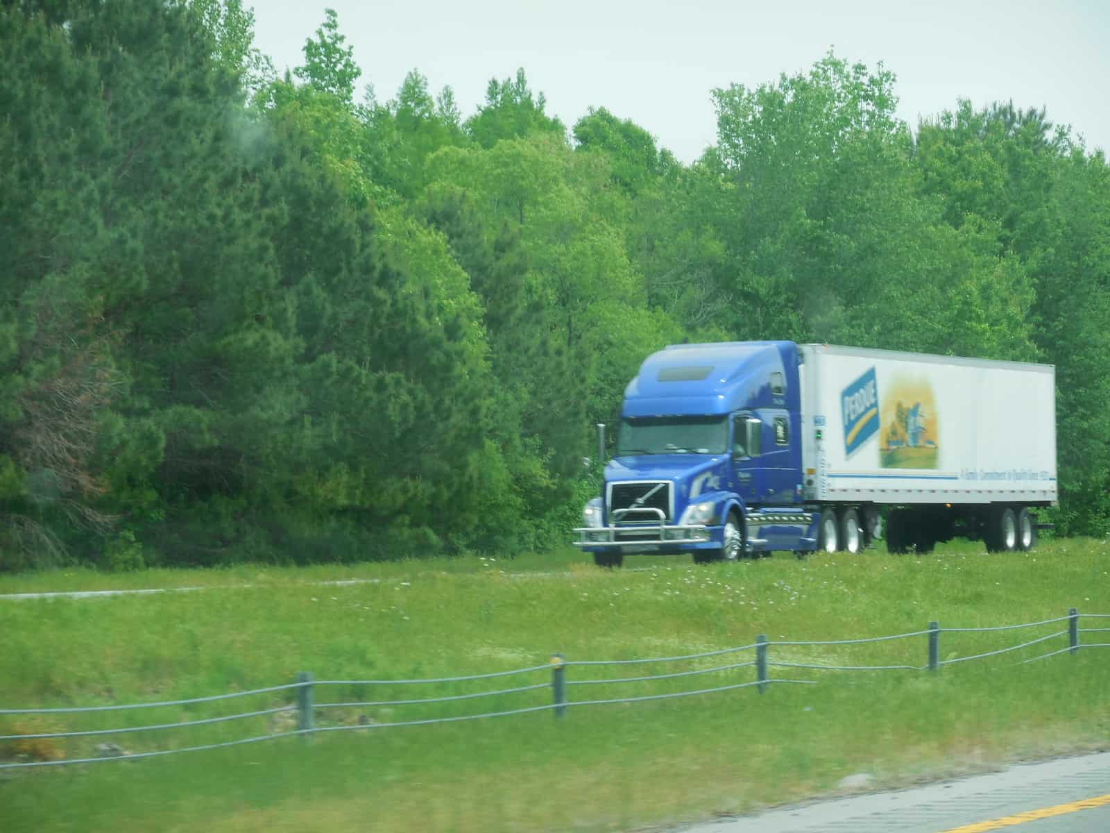 Michigan Asparagus Shipments Look Promising Despite Late Start